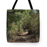 Canyon Path I Tote Bag