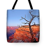 Canyon Tree Tote Bag