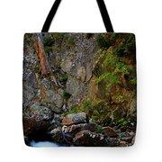 Canyon Wall Tote Bag