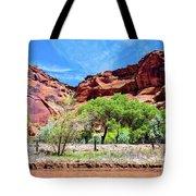 Canyon Wall. Tote Bag