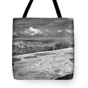 Canyonlands Puddles Tote Bag
