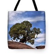 Canyonlands Tree Tote Bag