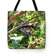 Cape Batis Tote Bag