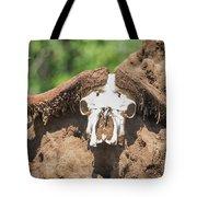 Cape Buffalo Skull Tote Bag