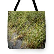 Cape Cod Beach 2 Tote Bag