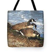 Cape Cod Beachcombers 1 Tote Bag