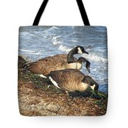 Cape Cod Beachcombers 1 Tote Bag