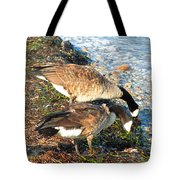 Cape Cod Beachcombers 2 Tote Bag