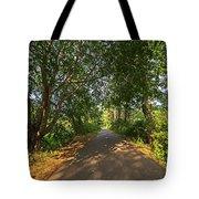 Cape Cod Rail Trail Trees Eastham Ma Tote Bag