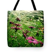 Cape Daisies And Angel Hair Tote Bag