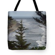 Cape Disappointment Beach Tote Bag
