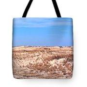 Cape Henlopen Panorama Tote Bag