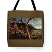 Cape Perpetua Sunset Tote Bag