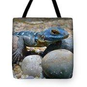 Cape Rock Lizard Tote Bag