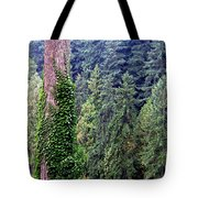 Capilano Canyon Ivy Tote Bag