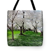 Capitol Gardens Cherry Trees Tote Bag
