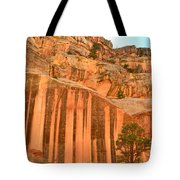Capitol Gorge Desert Varnish Tote Bag