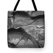 Capitol Reef 9581 Tote Bag
