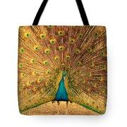Captain Peacock Tote Bag