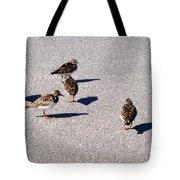 Captiva Birds 2 Tote Bag