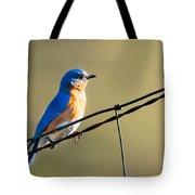 Captivating Blue Tote Bag