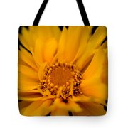 Captivating Coreopsis Tote Bag