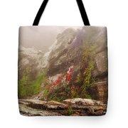 Captivating Palasades Tote Bag