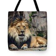 Captive Pride Tote Bag