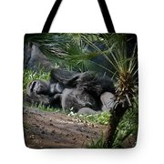 Captivity Is Heartbreaking Tote Bag