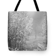 Capture Me Misty Tote Bag