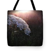 Captured By Beauty Tote Bag