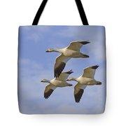 Captured Flight Of  Snow Geese Tote Bag