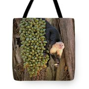 Capuchin Monkey Lunch Tote Bag