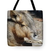 Capybara Resting In The Warm Sunlight Tote Bag