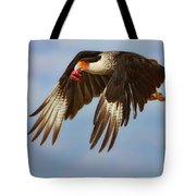 Caracara In Flight Tote Bag