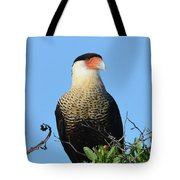 Caracara Portrait Tote Bag