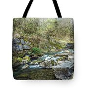 Caradocs Falls 2 Tote Bag