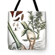 Cardamom, 1735 Tote Bag