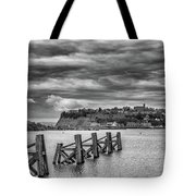 Cardiff Bay Dolphins Mono Tote Bag