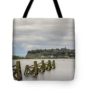 Cardiff Bay Dolphins Tote Bag