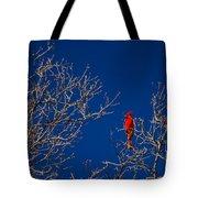 Cardinal Against Blue Sky Tote Bag