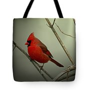 Cardinal And The Setting Sun Tote Bag