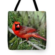 Cardinal Attitude Tote Bag