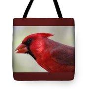 Cardinal Closeup D-bn2 Tote Bag