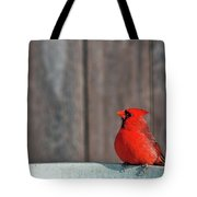 Cardinal Drinking Tote Bag