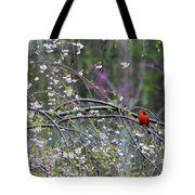 Cardinal In Flowering Tree Tote Bag