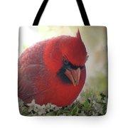 Cardinal In Flowers Tote Bag