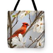 Cardinal In Magnolia Tote Bag