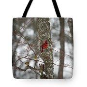 Cardinal In Snow Storm Tote Bag