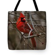 Cardinal In Spring Tote Bag